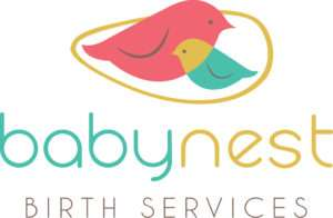 Baby Nest birth services Portland Oregon doula agency logo with red mom bird and blue baby bird in a nest