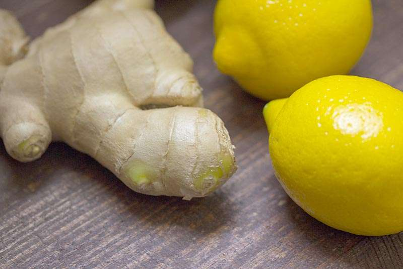 ginger can help with pregnancy symptoms like nausea